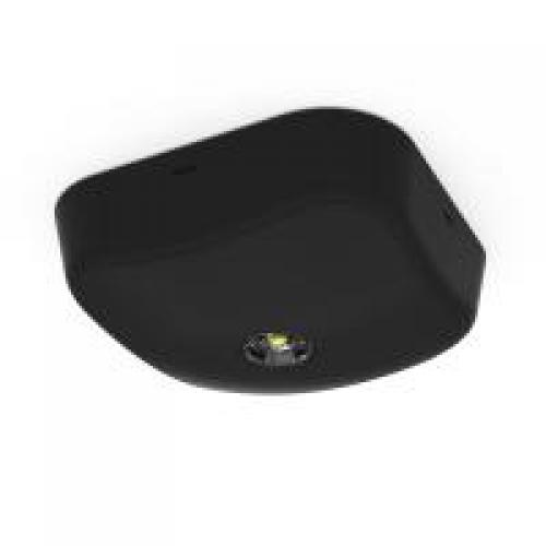 Asnell Falcon  Surface Emergency 3W 6500K LED Downlight (Black)