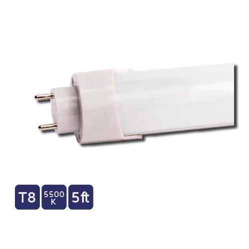 NET LED Carlton T8 1500 Mm 16W 5500K Led Tube (White)