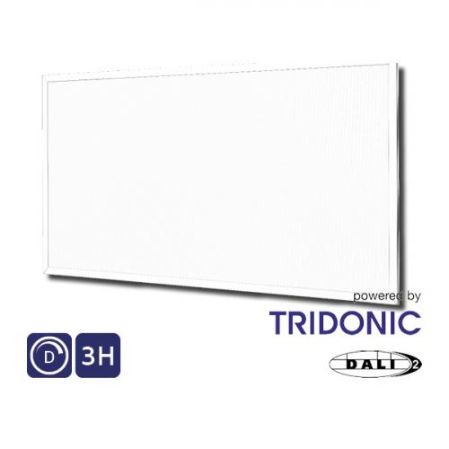 NET LED Hinxton Panel 1200x600 50W 4000K - IP44 Dimmable Emergency