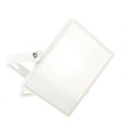 Saxby Lighting Scimitar IP65 30W cool white (White)