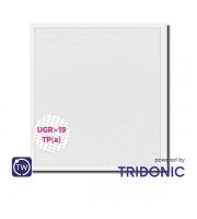 NET LED Kingston UGR<19 Tuneable White Pnl 600x600 30W Tp(a) Standard