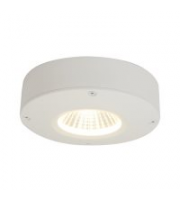 Ansell Calisto 3000K Led Wall/ceiling Light (WHITE)