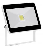 Aurora 265V 20W Adjustable IP65 Driverless Led Flood Light 6500K White (Cool Daylight)