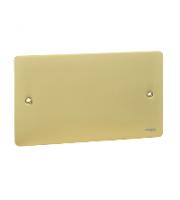 Scheider Electric Ufp Polished Brass 2 Gang Blank Plate