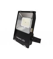 Integral 100W IP65 Precision Plus Area Floodlight 125000 Lumens 3000K Non Dim