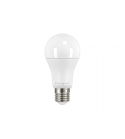 Integral GLS BULB E27 2000LM 14.5W 5000K NON-DIMM 200 BEAM FROSTED