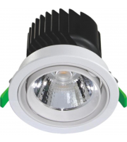 LED 24w Retail Downlight Module