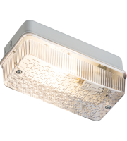 ML Accessories IP65 100W B22 Bulkhead (Aluminium/Prismatic)