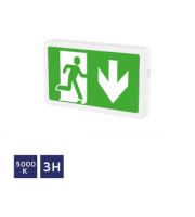 NET LED Bourne Em Surface Mount Exit Box
