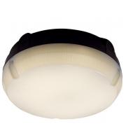 Ansell Delta 8W 4000K LED Bulkhead (Black/Visiluxe)