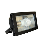 Eterna Low Energy Polycarbonate Floodlight (Black)