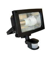 Eterna Low Energy PIR Floodlight (Black)