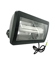 Eterna 57W Low Energy Floodlight (Black)
