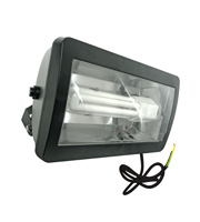 Eterna 57W Low Energy Floodlight with Photocell (Black)