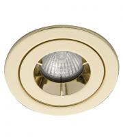 Ansell iCage Mini IP65 50W GU10 / MR16 Die-Cast Downlight (Brass)
