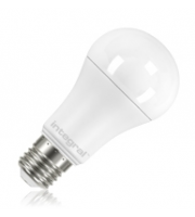 Integral E27 1600Lumens 13W Eq. to 100W 5000k 80cri 150° Frosted (Cool White)