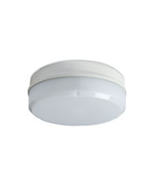 Robus Compact 10W Led Fitting, IP65, 284mm, White (White)