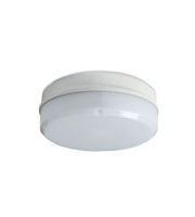 Robus Compact 10W Led Fitting, IP65, 284mm, White, Emergency (White)