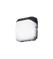 Robus Falcon 50W Led Wall Light, IP65, Black, 5500K, Photocell (Black)