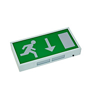 Robus IP20 Maintained LED Exit Box (White)