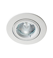 Robus 12V Die Cast Circular Directional Downlight (White)