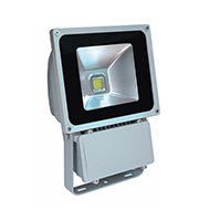 Robus High Powered 80W LED Flood Light (Grey)