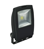 Robus Olympic 30W LED Floodlight (Black)