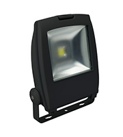 Robus 80W LED Floodlight (Black)